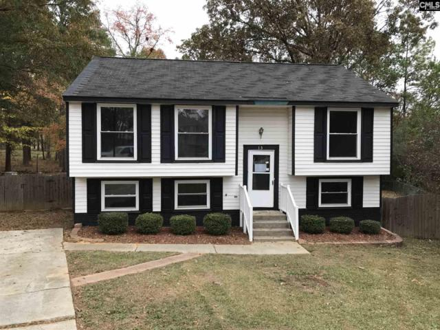 13 Lyne Cove Court, Irmo, SC 29063 (MLS #437458) :: Exit Real Estate Consultants
