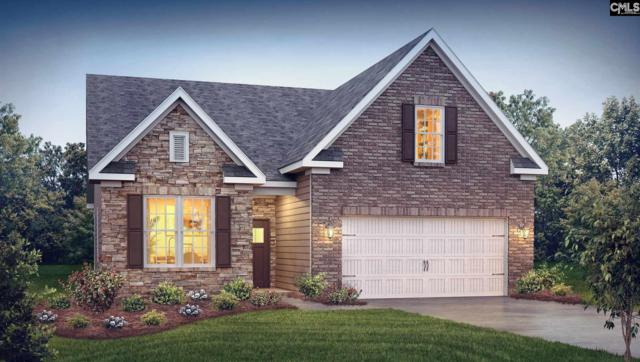 668 Scarlet Baby Drive #256, Blythewood, SC 29016 (MLS #437489) :: The Olivia Cooley Group at Keller Williams Realty