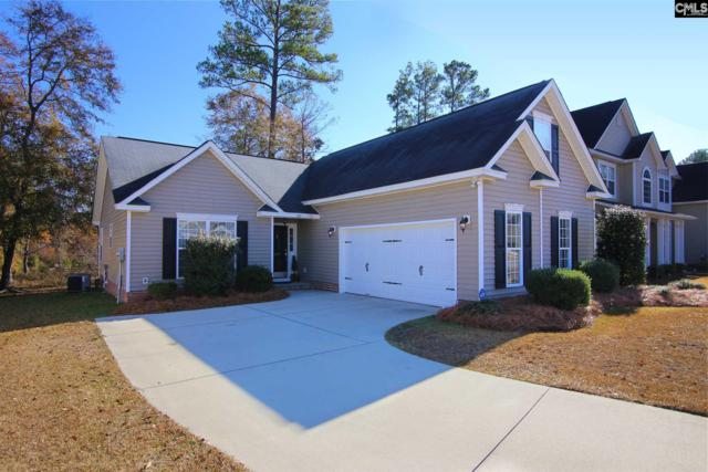 317 Kenmore Park Drive, Columbia, SC 29223 (MLS #437651) :: The Olivia Cooley Group at Keller Williams Realty