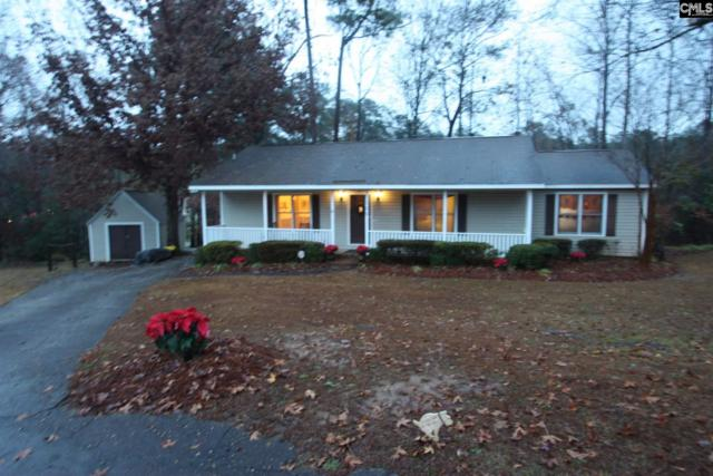 125 Pont South Lane, Lexington, SC 29073 (MLS #437714) :: The Olivia Cooley Group at Keller Williams Realty