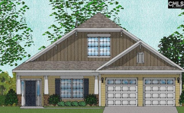 348 Renoir 183 Lane #183, Chapin, SC 29036 (MLS #437856) :: RE/MAX Real Estate Consultants