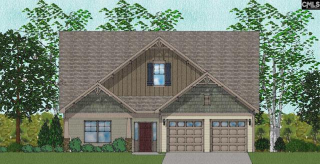 356 Renoir 185 Lane, Chapin, SC 29063 (MLS #437864) :: RE/MAX Real Estate Consultants