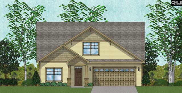362 Renoir 186 Lane, Chapin, SC 29063 (MLS #437868) :: RE/MAX Real Estate Consultants