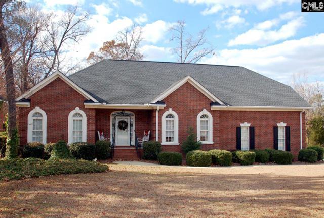 209 Night Harbor Drive, Chapin, SC 29036 (MLS #437944) :: RE/MAX Real Estate Consultants