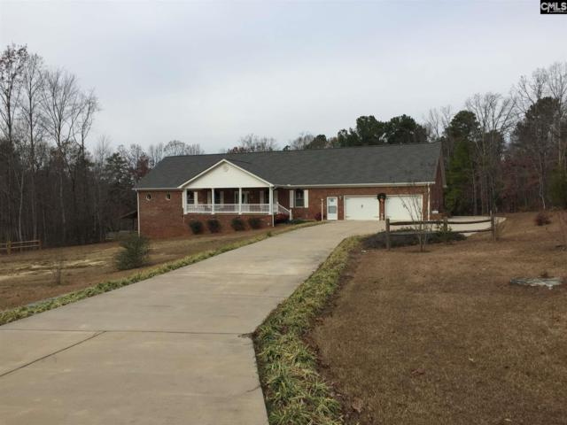 1515 Holy Trinity Church Road, Little Mountain, SC 29075 (MLS #438045) :: RE/MAX Real Estate Consultants