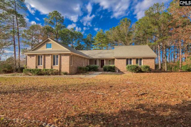619 Jacobs Mill Pond Road, Elgin, SC 29045 (MLS #438051) :: RE/MAX Real Estate Consultants