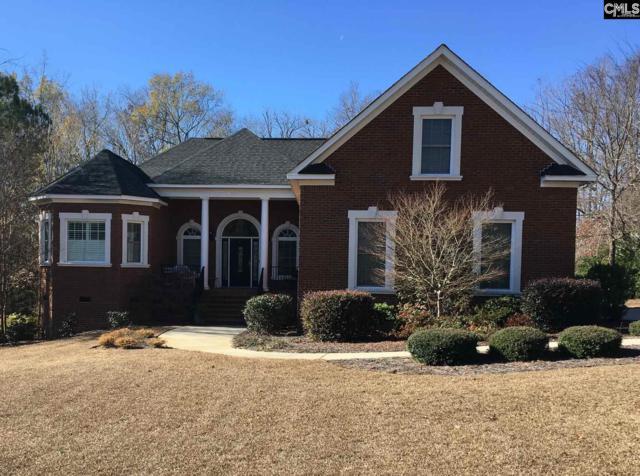 413 Ashwood Hill Road, Chapin, SC 29036 (MLS #438063) :: RE/MAX Real Estate Consultants