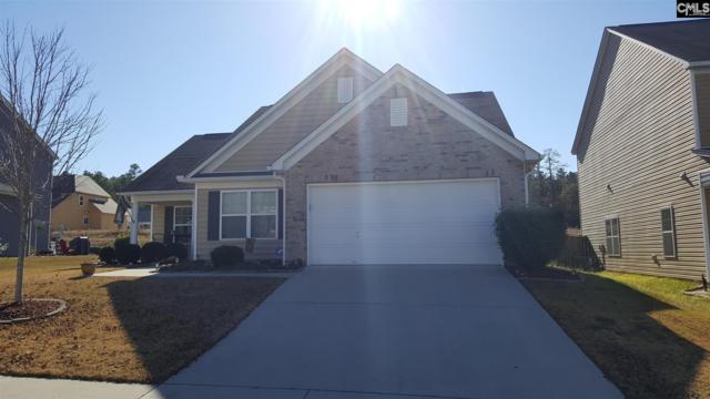 225 Hawkins Creek Road, Blythewood, SC 29016 (MLS #438067) :: RE/MAX Real Estate Consultants