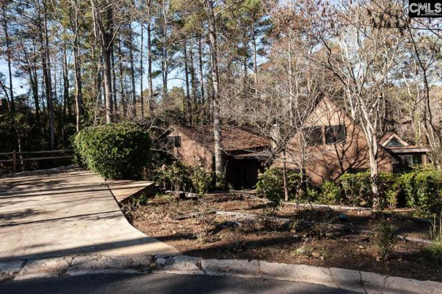 113 Tekesbury Court, Columbia, SC 29212 (MLS #438076) :: RE/MAX Real Estate Consultants