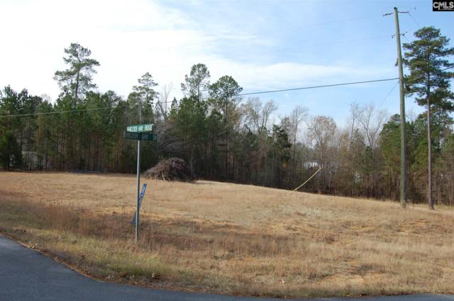 Shelter Bay Drive 1 And 2, Prosperity, SC 29127 (MLS #438238) :: EXIT Real Estate Consultants