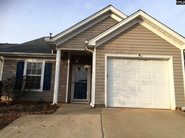 117 Merowey Court, Chapin, SC 29036 (MLS #438423) :: RE/MAX AT THE LAKE