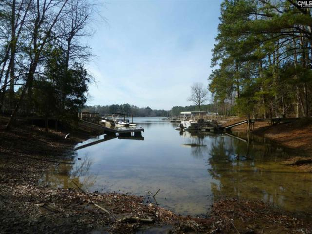 600 Newberry Drive, Chapin, SC 29036 (MLS #438515) :: Home Advantage Realty, LLC