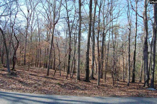Forest Shores Road 28 And 29, Prosperity, SC 29127 (MLS #438816) :: EXIT Real Estate Consultants