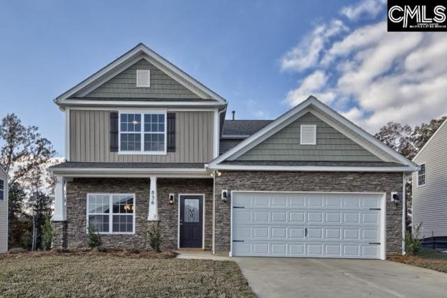 358 Explorer Drive #212, Chapin, SC 29036 (MLS #438986) :: EXIT Real Estate Consultants