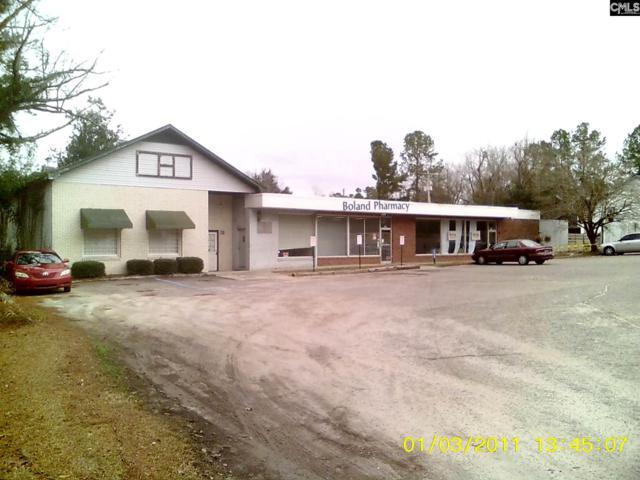 717 Harry C. Raysor Drive, St. Matthews, SC 29135 (MLS #439146) :: RE/MAX AT THE LAKE