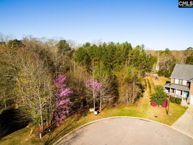 211 Emerald Oaks Way, Irmo, SC 29063 (MLS #439233) :: EXIT Real Estate Consultants