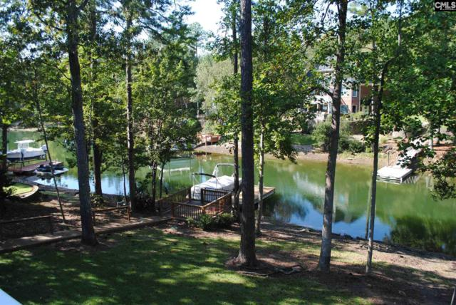 428 Lookover Pointe Drive, Chapin, SC 29036 (MLS #439338) :: EXIT Real Estate Consultants