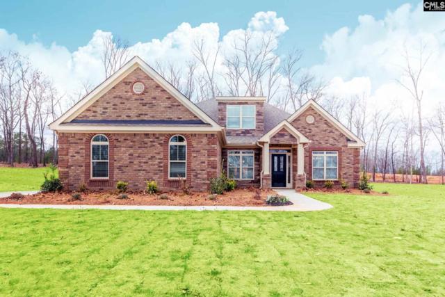 523 Pine Log Run #0008, Chapin, SC 29036 (MLS #439549) :: Home Advantage Realty, LLC