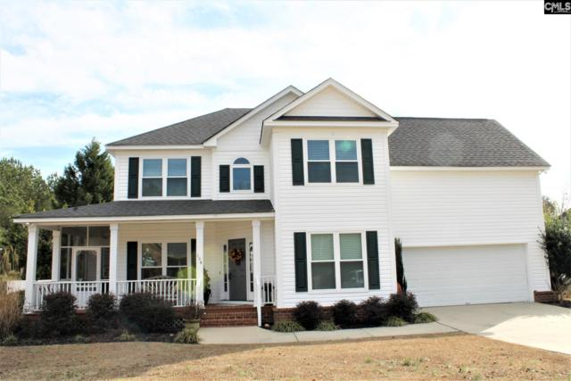 104 Rum Gully Lane, Chapin, SC 29036 (MLS #439626) :: The Olivia Cooley Group at Keller Williams Realty