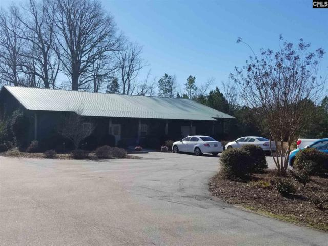830 Columbia Avenue, Chapin, SC 29036 (MLS #439648) :: Picket Fence Realty
