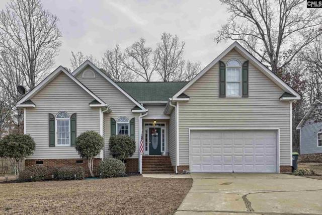 123 Moyer Drive, Chapin, SC 29036 (MLS #439662) :: Picket Fence Realty