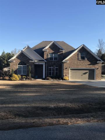 1134 Indian Fork Road, Chapin, SC 29036 (MLS #439689) :: Picket Fence Realty
