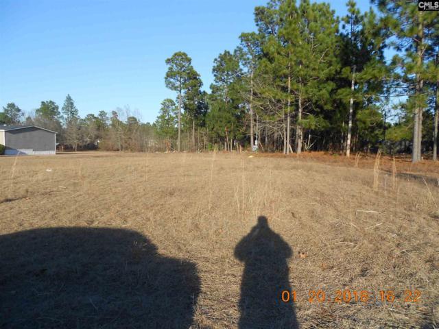 308 Deer Crossing #78, Gaston, SC 29053 (MLS #439755) :: Picket Fence Realty