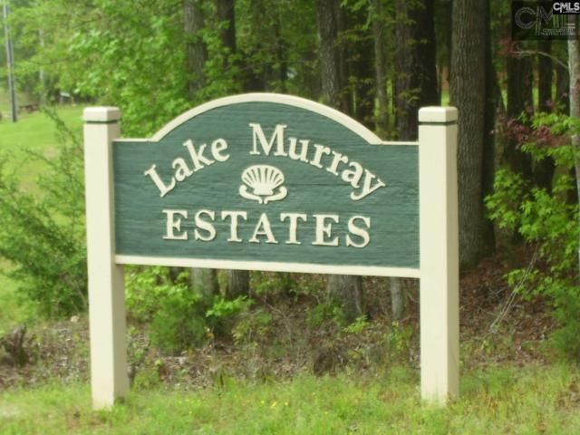 0 Ruby Riser Road #105, Batesburg, SC 29006 (MLS #439976) :: Home Advantage Realty, LLC