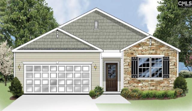 366 Explorer Drive #210, Chapin, SC 29036 (MLS #440289) :: EXIT Real Estate Consultants