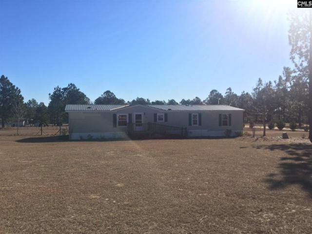1745 Pine Street, Pelion, SC 29123 (MLS #440443) :: Home Advantage Realty, LLC