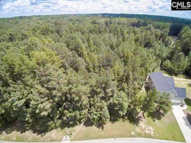 15 Dragging Canoe Court, Elgin, SC 29045 (MLS #440556) :: EXIT Real Estate Consultants