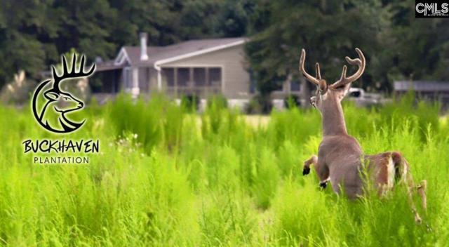 1551 Ashton Road, Ehrhardt, SC 29081 (MLS #440620) :: Home Advantage Realty, LLC