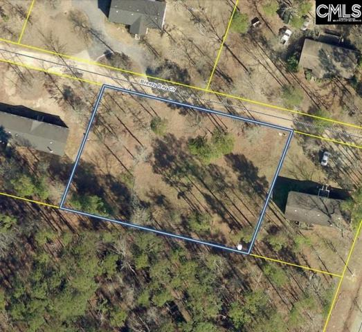 Breezy Bay Circle Lot 8 & 9, Gilbert, SC 29054 (MLS #440725) :: Exit Real Estate Consultants