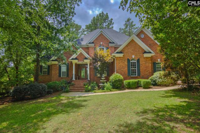 101 Deer Crossing Road, Columbia, SC 29045 (MLS #440793) :: EXIT Real Estate Consultants