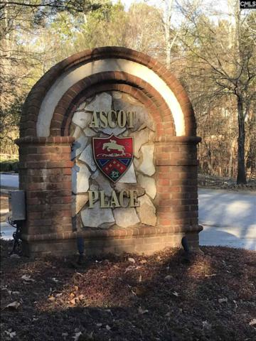 1 Aderley Court #159, Irmo, SC 29063 (MLS #440795) :: RE/MAX AT THE LAKE