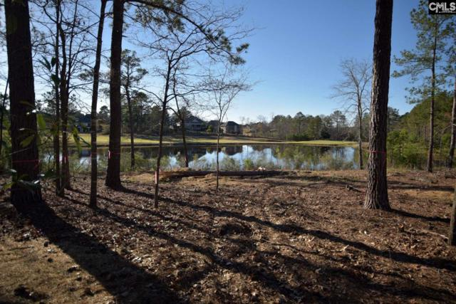 333 Club Colony Circle, Blythewood, SC 29016 (MLS #441108) :: EXIT Real Estate Consultants