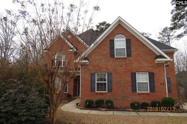 288 Popes Lane, Lexington, SC 29072 (MLS #441388) :: EXIT Real Estate Consultants