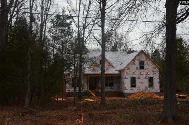 3012 Wessinger Road #2, Chapin, SC 29036 (MLS #441416) :: Home Advantage Realty, LLC