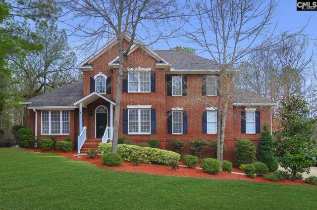 201 Char Oak Dr, Columbia, SC 29212 (MLS #441440) :: Home Advantage Realty, LLC