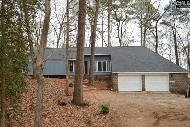 225 Powell Drive, Lexington, SC 29072 (MLS #441495) :: The Olivia Cooley Group at Keller Williams Realty