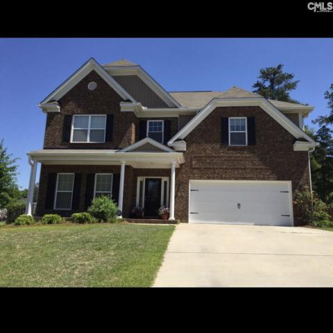313 Nichols Branch Lane, Irmo, SC 29063 (MLS #441574) :: Exit Real Estate Consultants
