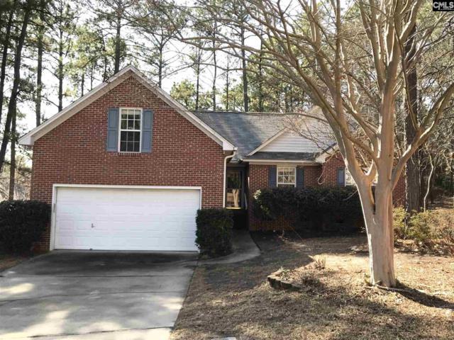 3 Box Turtle Court, Columbia, SC 29229 (MLS #441593) :: Home Advantage Realty, LLC