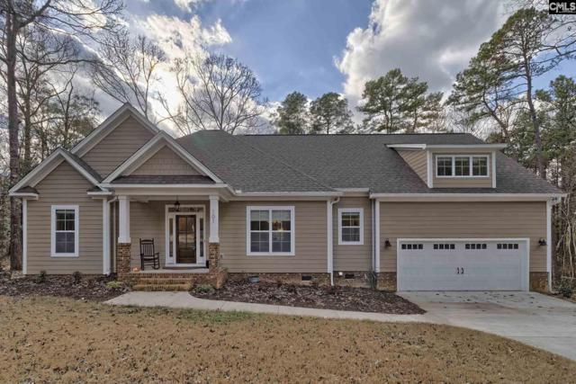 101 Red Fox Trail, Chapin, SC 29036 (MLS #441709) :: Home Advantage Realty, LLC