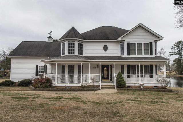 259 Bent Oak Drive, Chapin, SC 29036 (MLS #441752) :: Home Advantage Realty, LLC