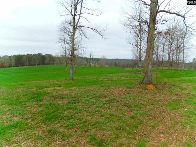 294 Corley Bridge Road, Leesville, SC 29070 (MLS #441766) :: Home Advantage Realty, LLC