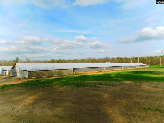 294 Corley Bridge Road, Leesville, SC 29070 (MLS #441792) :: Home Advantage Realty, LLC