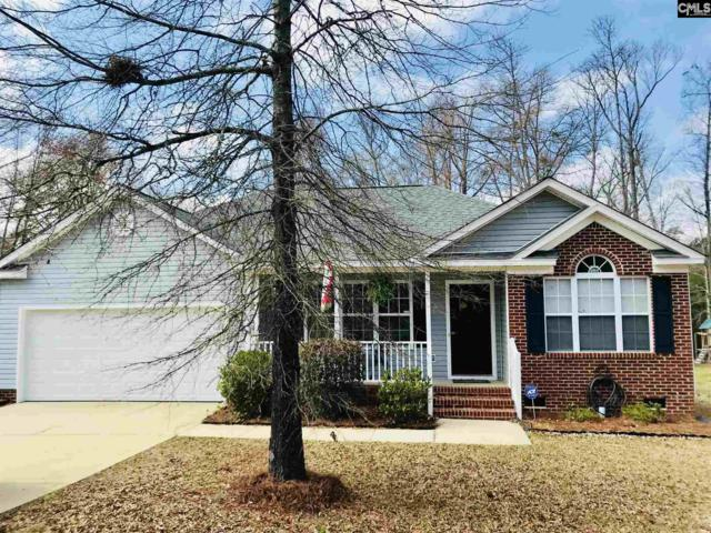 674 Old Lexington Highway, Chapin, SC 29036 (MLS #441827) :: Exit Real Estate Consultants