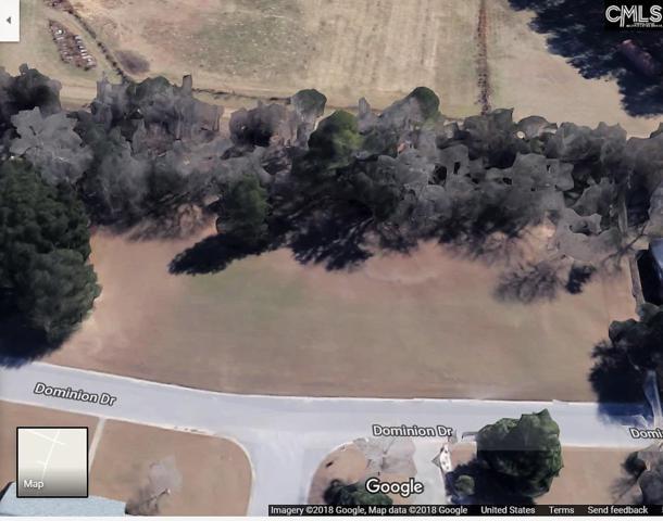1718 Dominion Drive, Columbia, SC 29209 (MLS #441864) :: RE/MAX AT THE LAKE
