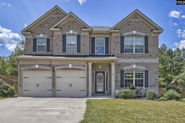 433 Coopers Edge Lane, Blythewood, SC 29016 (MLS #441940) :: Home Advantage Realty, LLC