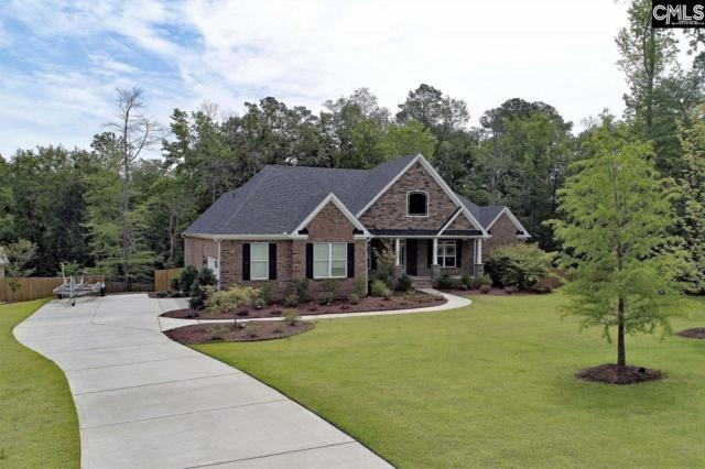 115 Sylvan Street, Chapin, SC 29036 (MLS #441944) :: Home Advantage Realty, LLC